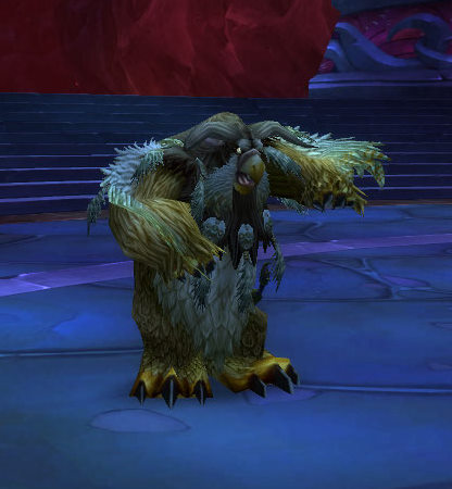 Boomkin power!
